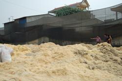 Người dân phường Hữu Nghị bức xúc vì hoạt động sản xuất của Công ty gây ô nhiễm môi trường