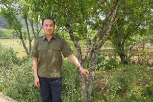 Mang trên mình màu áo xanh của người công an, Sùng A Chếnh đã tham gia bắt giữ nhiều vụ vận chuyển trái phép ma tuý.