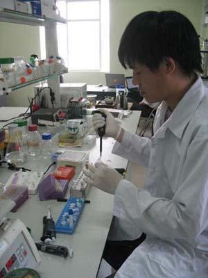 Cán bộ Viện công nghệ sinh học nhân bản gen