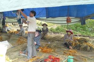 Chủ cơ sở sản xuất chổi chít Thanh Niên, xã Yên Mông, TPHB Trần Văn Điệp luôn mong muốn mở rộng quy mô sản xuất, tạo nhiều việc làm cho lao động nông thôn.