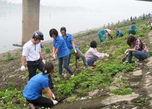 Trên 600 ĐV- TN và công nhân Công ty CP môi trường đô thị Hòa Bình tham gia dọn vệ sinh dọc 2 bờ kè sông Đà.