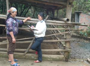 Tình trạng vệ sinh môi trường khu vực chăn nuôi gia súc tại các hộ gia đình ở bản người Dao xóm Cáp còn bất cập.