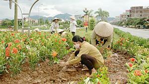 Công ty CP Môi trường đô thị Hoà Bình huy động nhiều nguồn lực trồng hoa trên các trục đường thành phố.