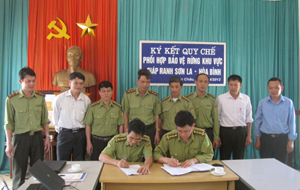 Lãnh đạo Chi cục Kiểm lâm Hòa Bình và Sơn La ký kết quy chế phối hợp.