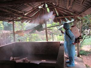Tổ chức phun thuốc khử trùng môi trường chăn nuôi tại xã Thống Nhất – thành phố Hòa Bình.