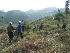 Đến nay, huyện Mai Châu đã xây dựng và duy trì được 22,5 km đường băng trắng cản lửa ở 4 xã vùng Tây Nam của huyện