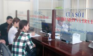 BHXH thành phố thực hiện việc cấp thẻ, giám định BHYT, tiếp nhận và trả kết quả theo quy định.