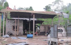 Hộ dân tổ 10, phường Chăm Mát (thành phố Hòa Bình) đang khẩn trưởng sửa chữa, lợp lại nhà ở.