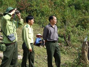 Lực lượng kiểm lâm thường bám cơ sở triển khai công tác quản lý, bảo vệ rừng trên địa bàn huyện Mai Châu. Trong ảnh: Cán bộ kiểm lâm kiểm tra đánh giá tài nguyên rừng ở các xã giáp ranh vùng tây nam huyện.