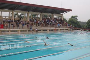 Các vận động viên tham gia nội dung bơi tự do 50m nam THPT.