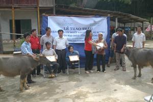 Lễ trao trâu, bò giống cho các hộ gia đình khó khăn có đủ điều kiện chăn nuôi bò theo chương trình