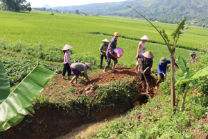 Xóm Mớ Đá, xã Hạ Bì (Kim Bôi) huy động lực lượng tại chỗ khắc phục hiện trạng mương, cống bị hư hỏng sau đợt mưa lốc ngày 18/5.