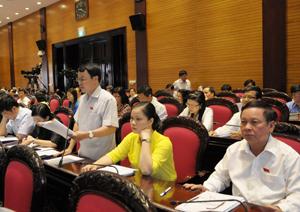 Đại biểu Nguyễn Tiến Sinh phát biểu ý kiến tại hội trường.