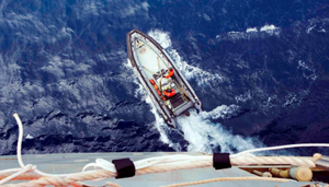 MH370 không nằm ở khu vực rộng 850km2 đang tìm kiếm (Ảnh: asiaone).