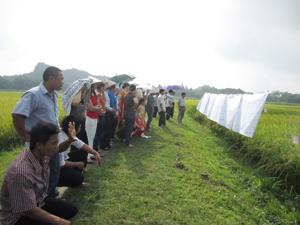 Đại biểu tham quan khu ruộng thực hành chọn tạo giống lúa của lớp FFS trên địa bàn thôn Đồng Sương.