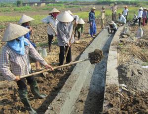Nhân dân xã Đồng Tâm (Lạc Thủy) tham gia xây dựng kênh mương nội đồng phục vụ sản xuất.