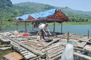 Tính đến nay, ông Bùi Minh Bưn đã đầu tư 5 lồng cá nuôi thử nghiệm trên mặt nước hồ Khả.