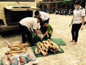 Lực lượng chức năng kiểm tra lô hàng sản phẩm động vật không có nguồn gốc xuất xứ.