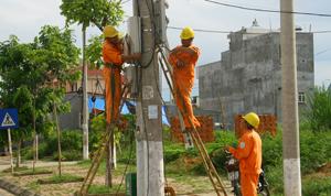 Công nhân Điện lực thành phố Hoà Bình cải tạo hệ thống điện, đảm bảo cung cấp điện ổn định, an toàn trong mùa mưa bão.