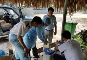 Cán bộ Chi cục Chăn nuôi và Thú y lấy mẫu kiểm tra chất cấm trong chăn nuôi tại Trung tâm cung cấp lợn thịt CP xã Cao Dương (Lương Sơn).