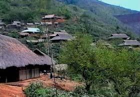 Cuộc sống người Mông luôn gắn bó với rừng.