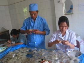 Cán bộ, nhân viên của Công ty CP Y dược học dân tộc Hoà Bình đưa các bài thuốc hay phục vụ công tác điều trị.