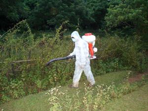 Thực hiện phun khử trùng tiêu độc bãi chăn thả gia súc tại xóm Bưng, xã Thu Phong.