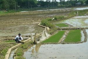 Hệ thống kênh mương xã Thành Lập (Lương Sơn) được đầu tư nâng cấp đảm bảo phục vụ cho SXNN.