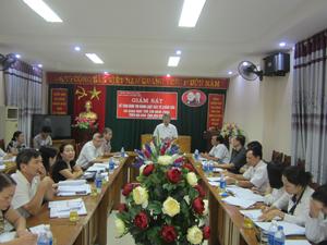 Đồng chí Hoàng Thanh Mịch, Trưởng Ban Tuyên giáo Tỉnh ủy, Trưởng Ban VHXH&DT chủ trì cuộc giám sát.