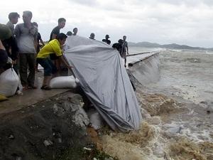Các địa phương tích cực phòng chống bão lũ (Nguồn: TTXVN)