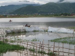 Hàng chục ha ruộng của nhân dân xã Sủ Ngòi bị úng ngập nặng do kênh tiêu thoát nước không đảm bảo (người dân tranh thủ dùng thuyền đánh bắt cá vào ruộng úng).