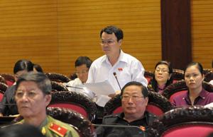 Đại biểu Quốc hội Nguyễn Tiến Sinh phát biểu tại hội trường.