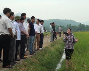 Các đại biểu cùng bà con tham quan mô hình cải tạo đất và thâm canh lúa chất lượng cao tại thôn Tre Thị.