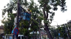 Công nhân Công ty chiếu sáng Hà Nội khôi phục mạng lưới đèn đường trên phố Quang Trung.