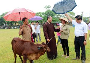 Đại diện Trung ương Hội NTT & TMC, nhà hảo tâm tại Hà Nội trao tặng bò giống cho hộ tàn tật xã Ngọc Lương.
