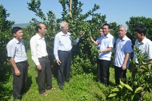 Huyện Cao Phong: Khai thác hiệu quả tiềm năng, thế mạnh, đưa Cao Phong trở thành huyện phát triển khá của tỉnh