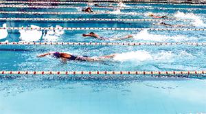 Các VĐV huyện Tân Lạc  thi đấu nội dung 50 m  tự do nữ vô địch  tại giải bơi các cự ly, vô địch, trung, cao tuổi tỉnh năm 2016.