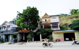 8 hộ dân thuộc khu 5, thị trấn Kỳ Sơn nguy cơ bị ảnh hưởng trực tiếp từ vết nứt đồi dài 13m, rộng 0,4m.