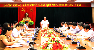 Đồng chí Bùi Văn Tỉnh, Bí thư Tỉnh ủy phát biểu kết luận buổi làm việc.