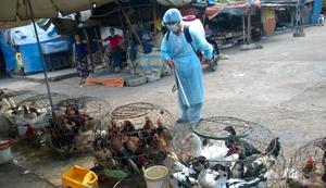 Cán bộ Trạm thú y TP Hòa Bình phun tiêu độc khử trùng tại chợ  Nghĩa Phương.