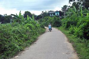 Hệ thống đường GTNT xã Thanh Nông (Lạc Thủy)  được đầu tư xây dựng cơ bản đạt chuẩn đáp ứng nhu cầu đi lại  và giao lưu hàng hóa của nhân dân.