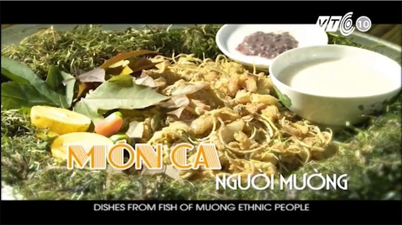 Dishes from fish of Muong ethnic people