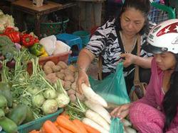 Cà rốt, củ cải trắng là nguyên liệu rất tốt để chế biến món ăn cho người bệnh gan nhiễm mỡ.