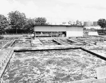 Trạm sử lý nước thải của công ty VEDAN bơm nước thải trực tiếp ra sông Thị Vải.