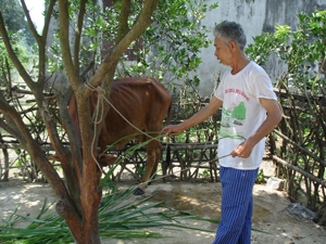 Sống giữa thời bình nhưng thương binh Trần Văn Tiệm chưa được hưởng một giây phút yên lòng vì nỗi đau da cam đang trút lên cả 3 thế hệ trong gia đình ông.