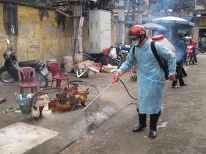 Trạm thú y thành phố Hòa Bình triển khai chiến dịch phun tiêu độc khử trùng đợt 3 tại các điểm buôn bán, giết mổ gia cầm.