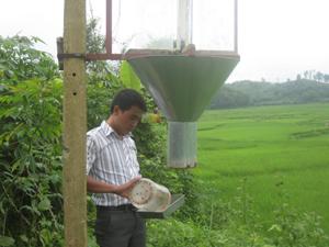 Cán bộ trạm BVTV huyện Tân Lạc tích cực theo dõi lứa rầy vào đèn tại điểm bẫy đèn xã Mãn Đức.