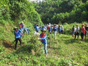 Sinh viên tình nguyện tham gia phát quang bụi rậm tại xóm Ngái, xã Yên Lập (Cao Phong).