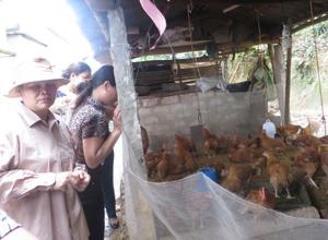 Mô hình nuôi gà an toàn sinh học tại xã Mông Hóa được triển khai thành công tại xã Mông Hóa (Kỳ Sơn)