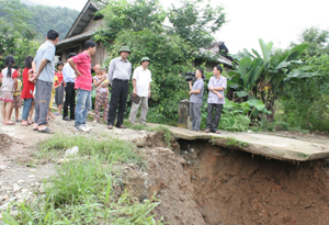 Đồng chí Hoàng Văn Tứ, GĐ Sở NN&PTNT kiểm tra khu vực sạt lở.
